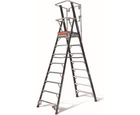 SAFETY CAGE® LADDER